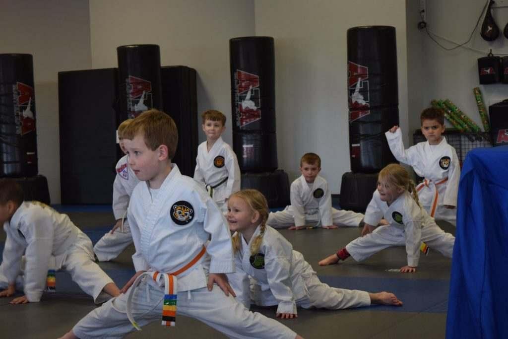 Tigers 3 1024x683, Elite Martial Arts Olathe KS