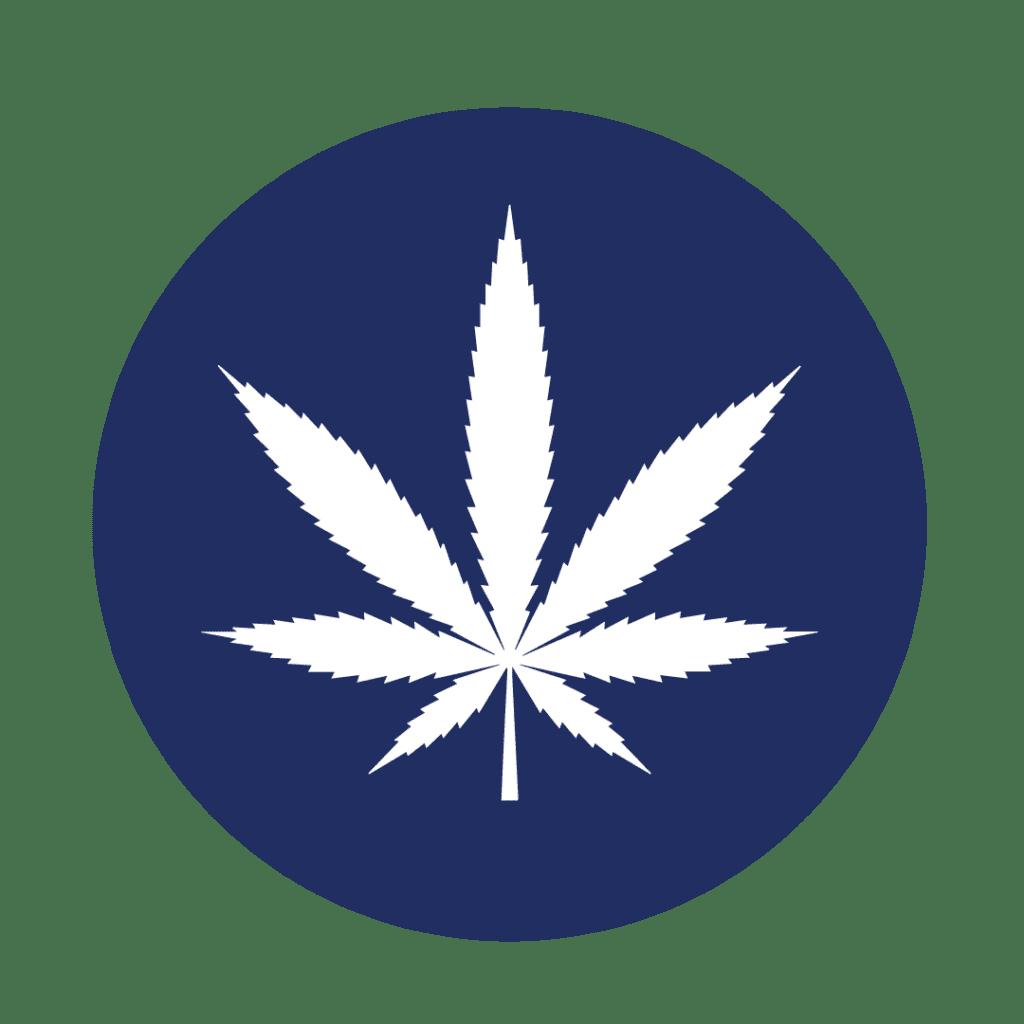 Drugs 1024x1024, Elite Martial Arts Olathe KS